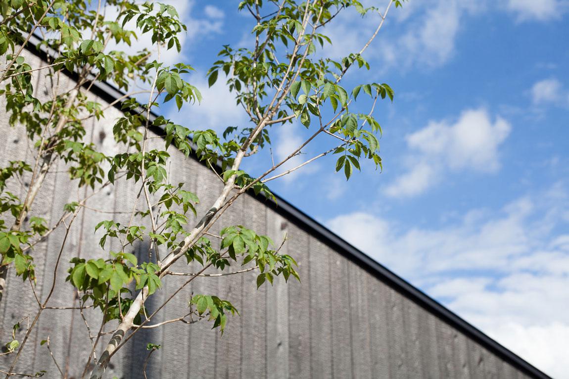 平屋のような2階建ての家イメージ