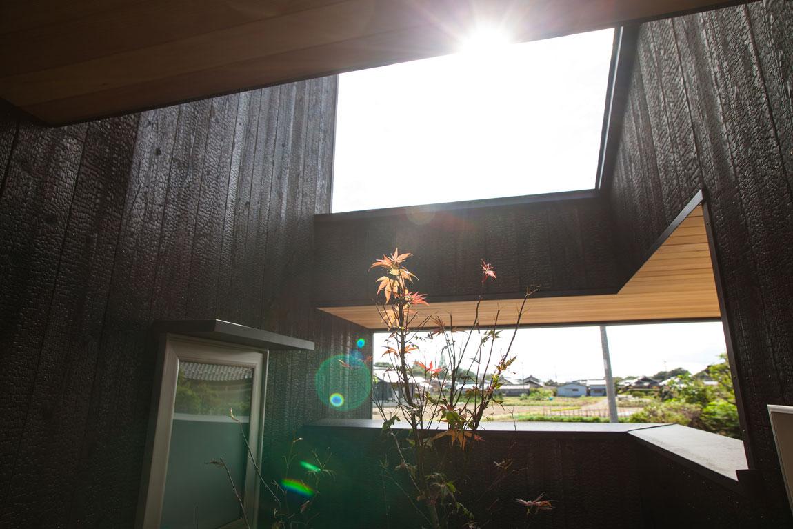焼杉外壁の平屋_坪庭